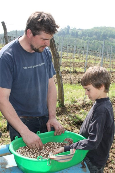 Andreas And Son Sowing Green Manure
